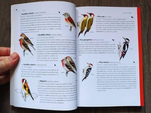 Identificación de aves por su color
