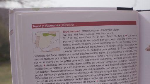 Mapas de distribución mamíferos de España